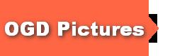OGD Pictures Ltd.